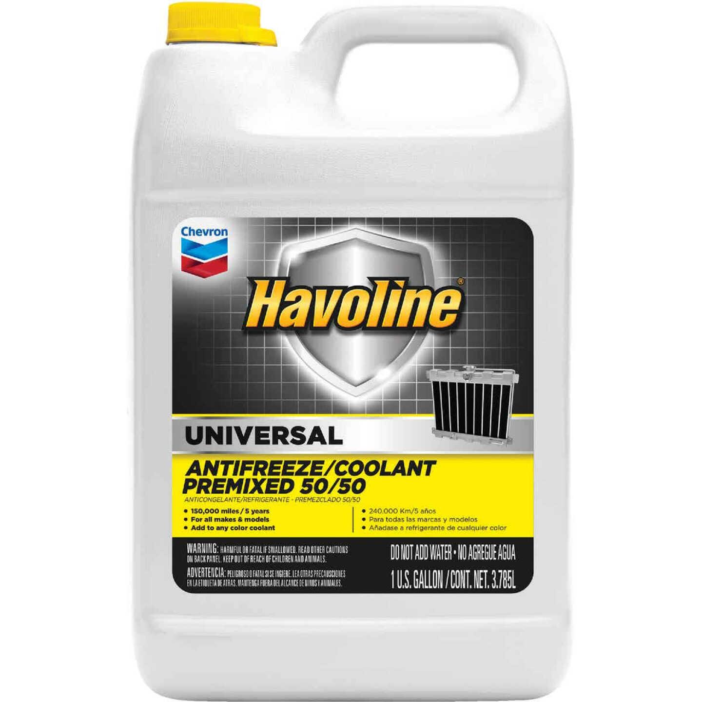 Havoline Universal Gallon 50/50 Pre-Diluted -34 F to 265 F Automotive Antifreeze Image 1